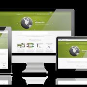 Diseño web con alojamiento incluido